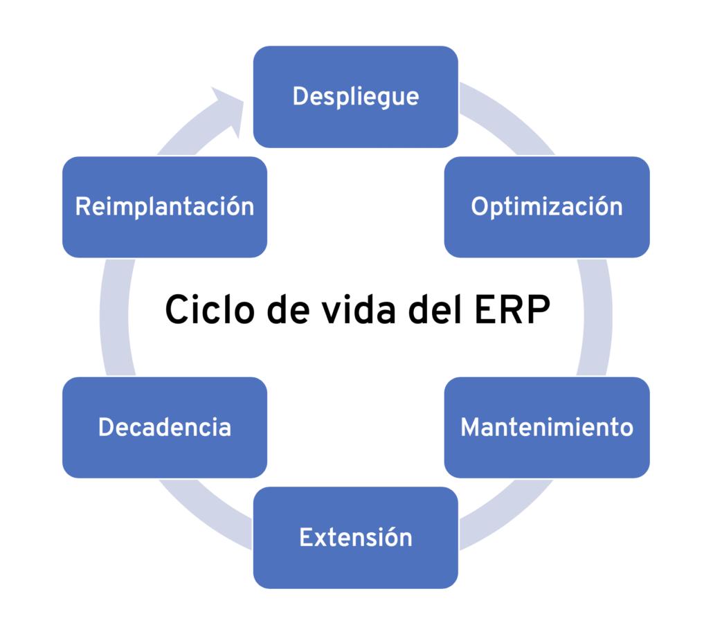 Ciclo de vida de un ERP - Olivia